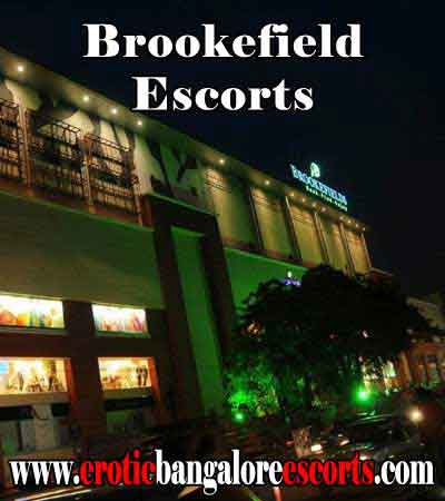 Brookefield Escorts