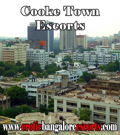 Cooke Town Escorts