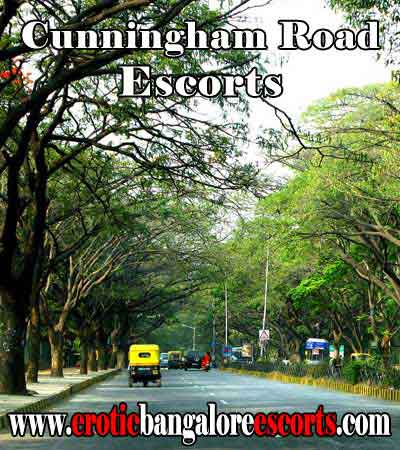 Cunningham Road Escorts